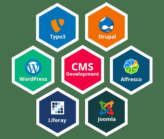 Our CMS Development Services